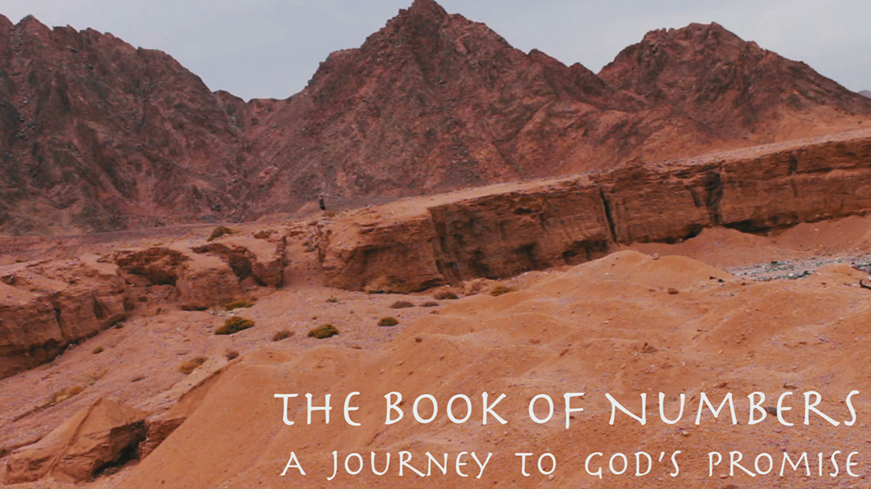The Book of Numbers: A Journey to God's Promise - A series through the book of Numbers