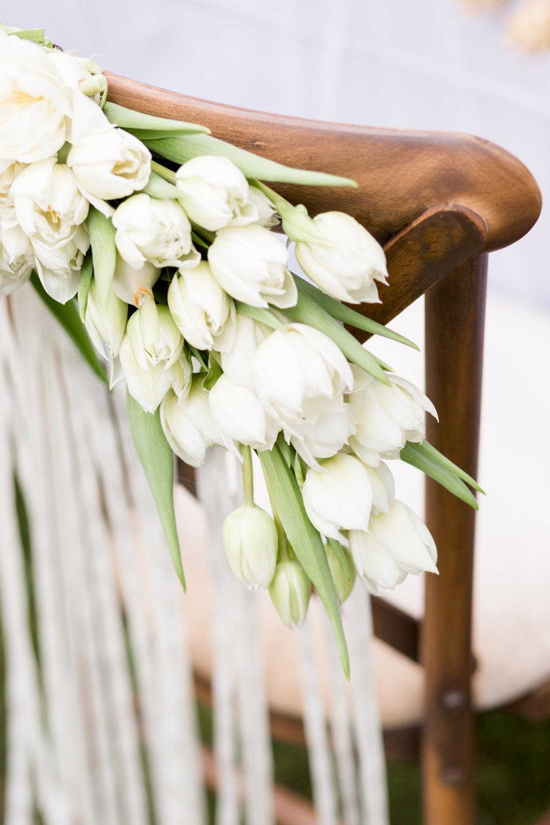 Tulip Mania-0022.jpg