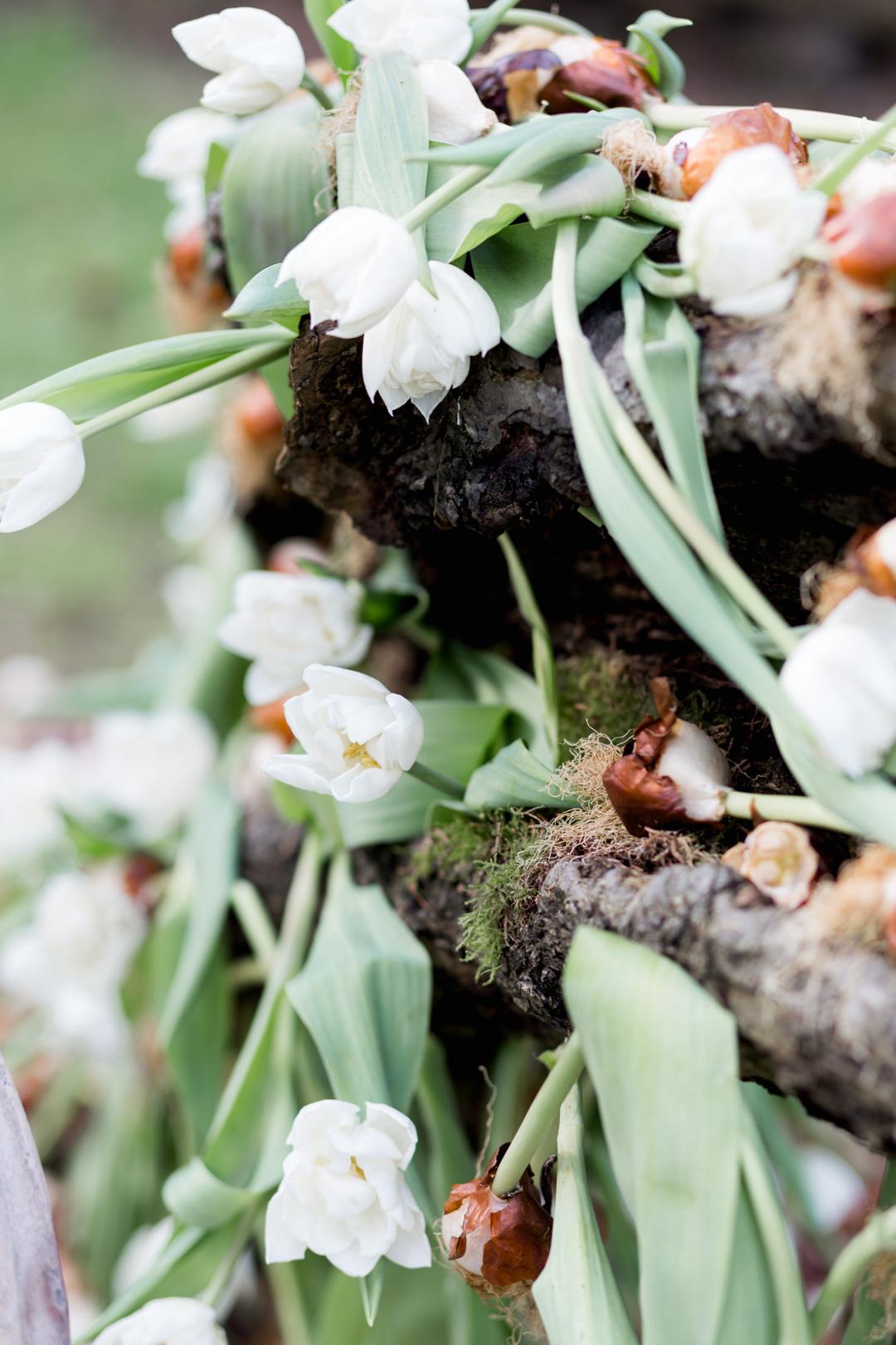 Tulip Mania-0096.jpg