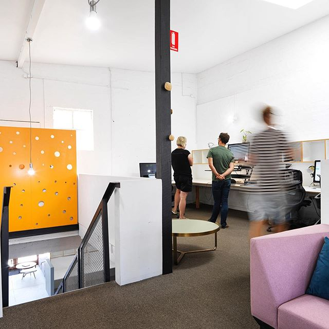 If you are looking for a permanent location for 2 or more business operators, there are spaces available for 2,3 and 4 people within our flexible open plan layout. . . #officespace #coworkingspace #australia #camperdown #tenant
