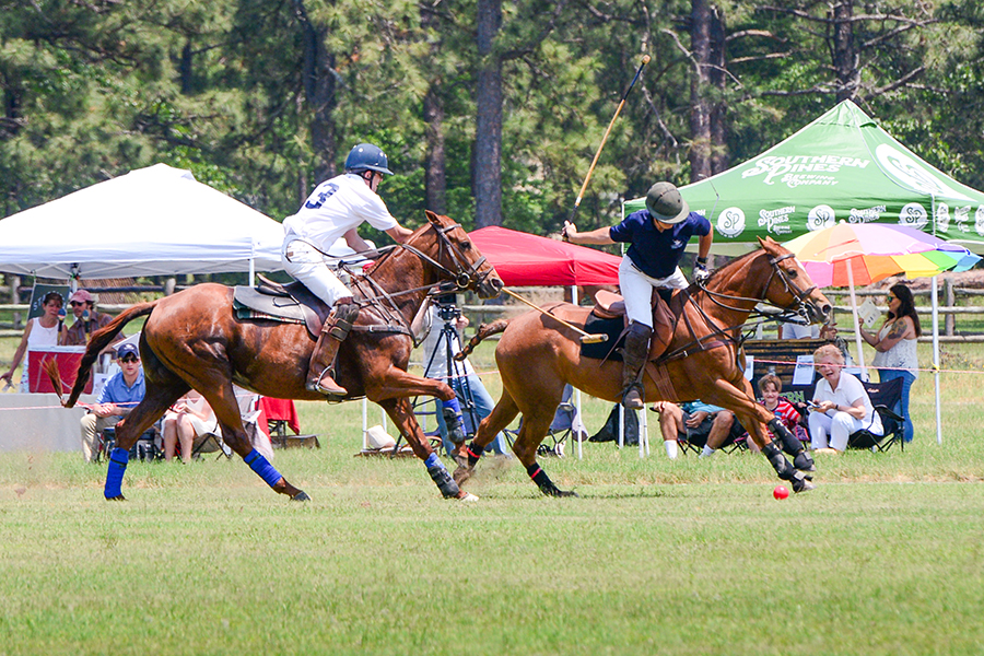 Polo at Buchan Field