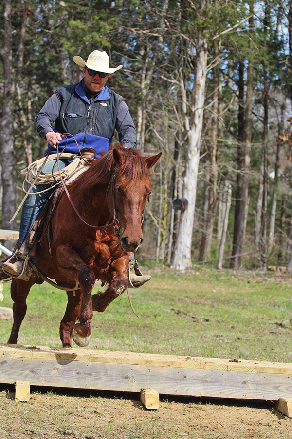 Will working with a young horse over an obstacle.
