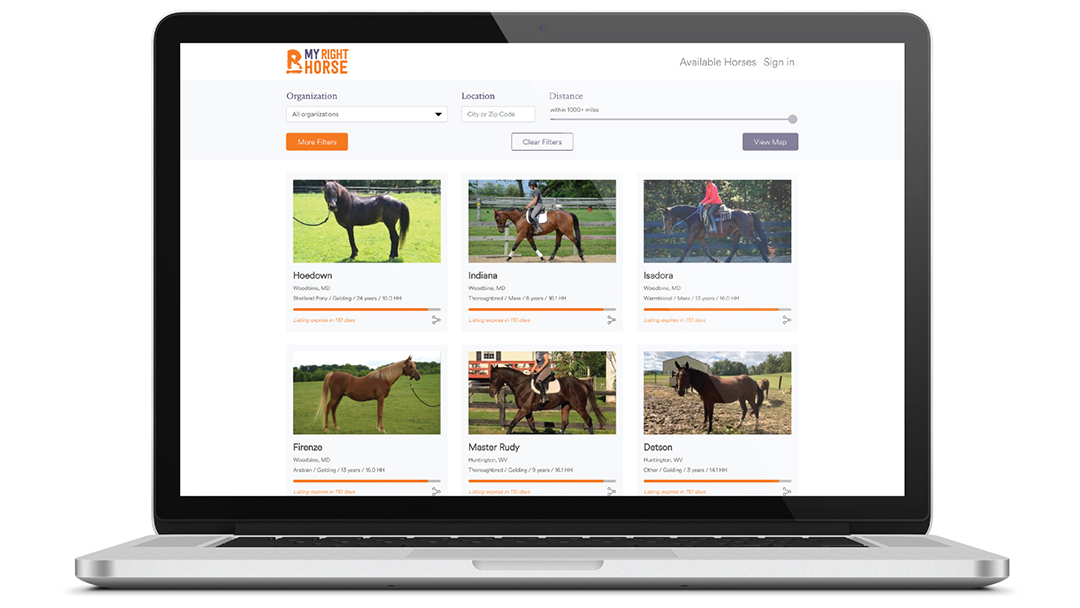 Search page at MyRightHorse.org