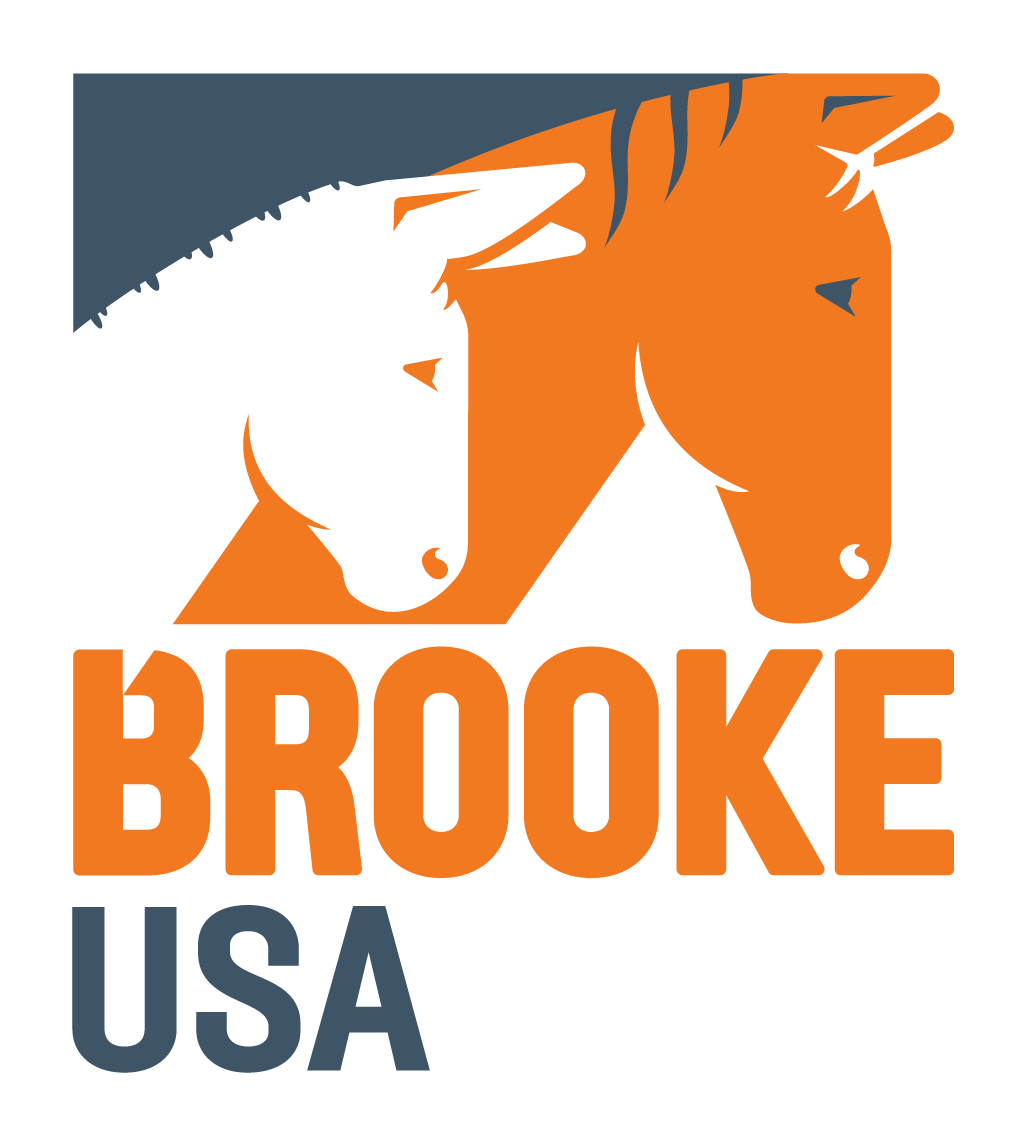 Brooke USA logo.png