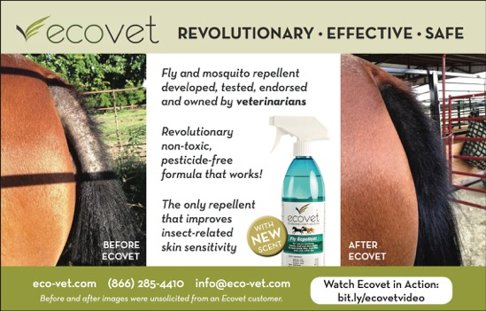ecovet-tail-before-after-ad.jpeg