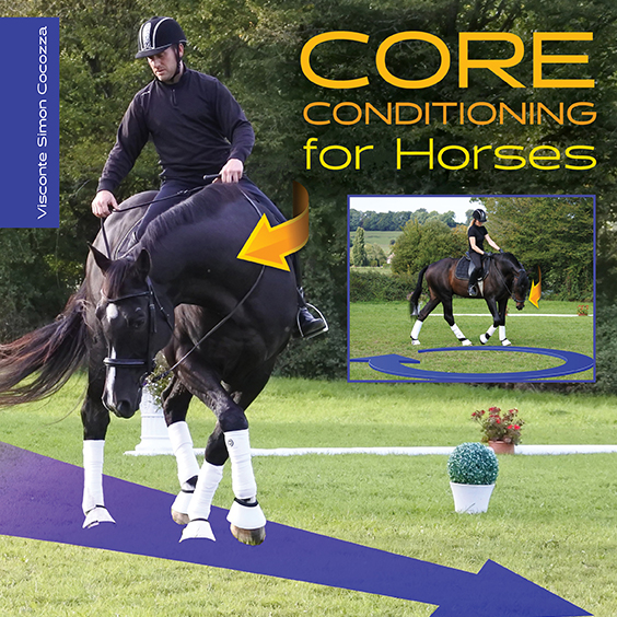 Core Conditioning for Horses-SQ.jpg