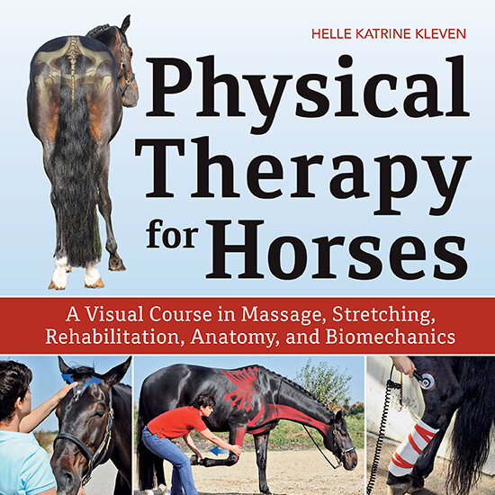 Physical Therapy for Horses (002)_SQ.jpg