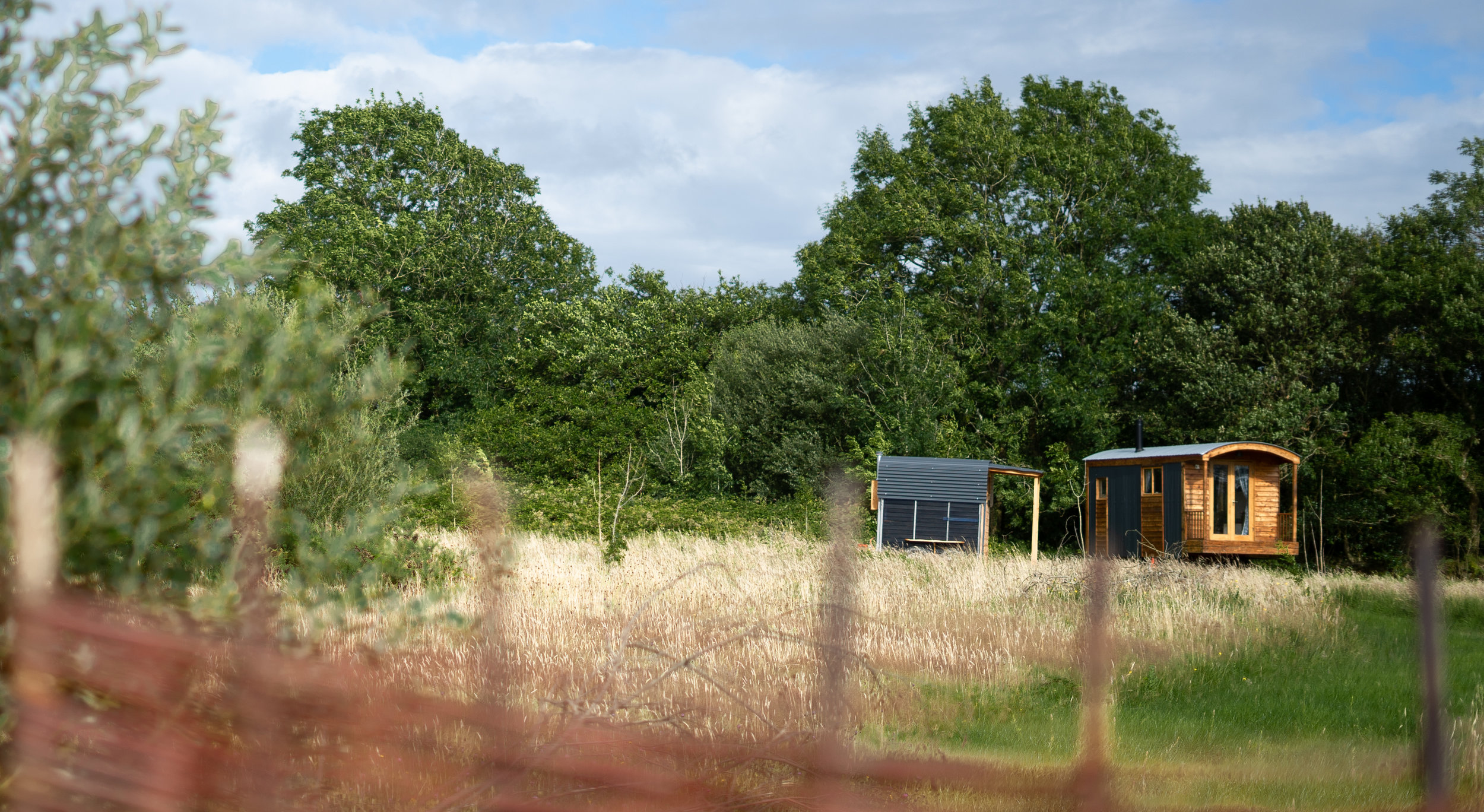 Dragonfly Shepherds Hut Glamping Pembrokeshire Dragonfly Camping