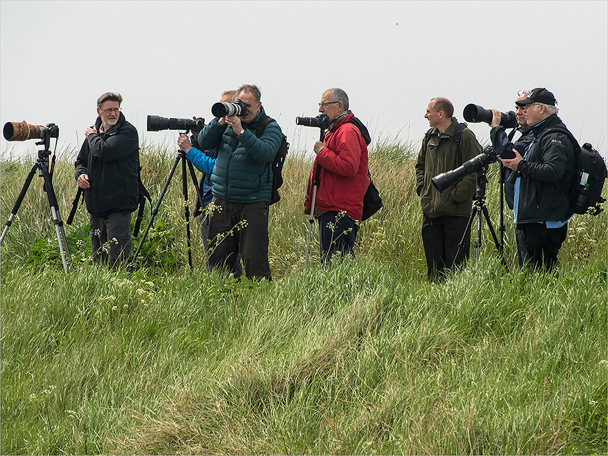 Special Interest Groups - Offer members the opportunity to practice, share and improve their photography together.