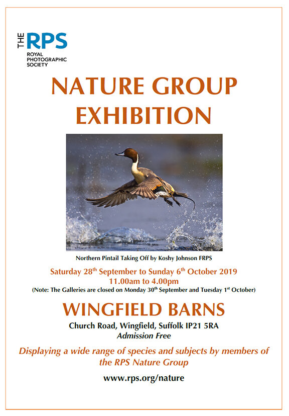 RPS Nature Group Exhibition Poster