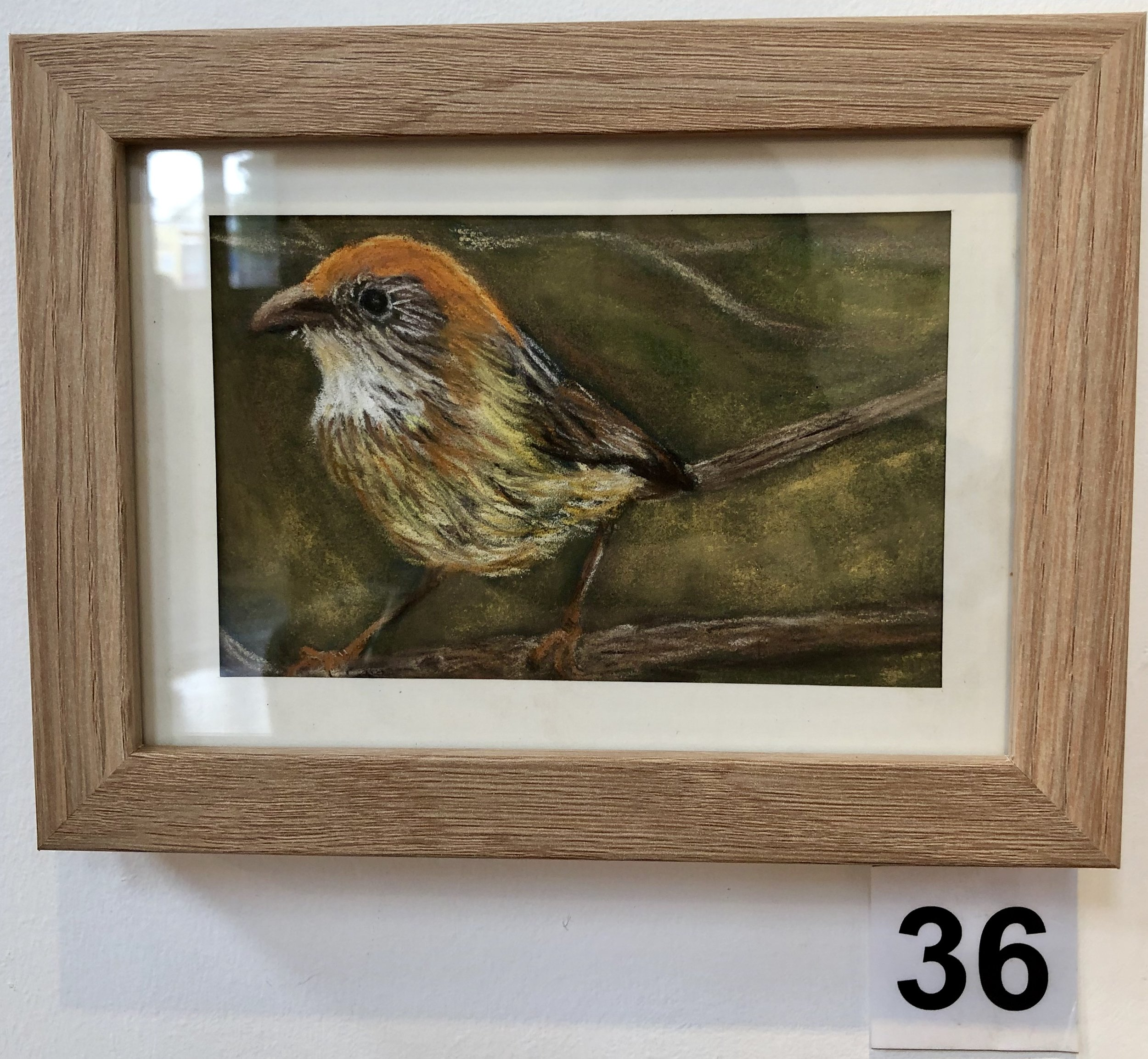 """Mallee Emu Wren"" by Cathy Trembath"