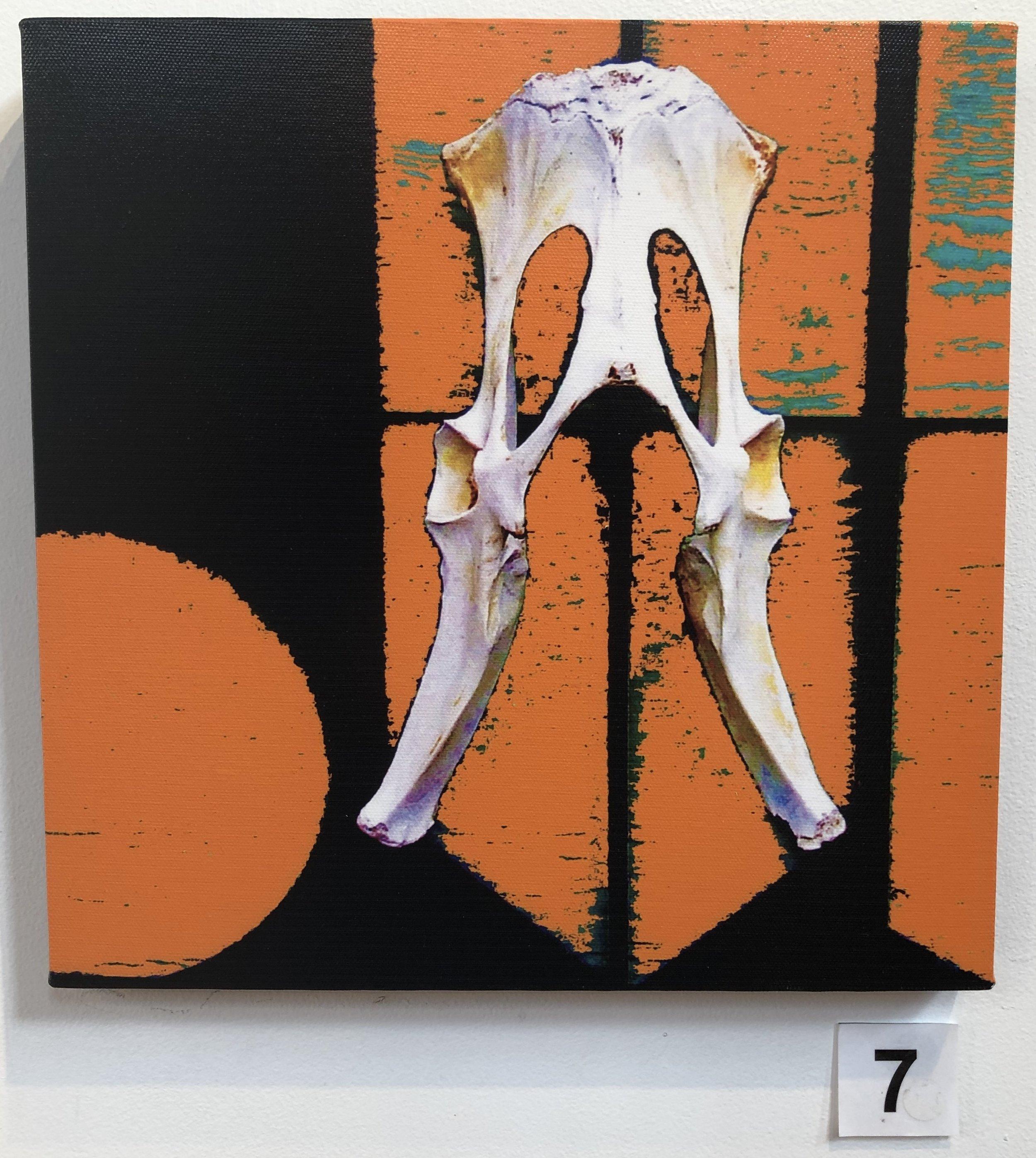 """""""Pelvis - Kangaroo"""" by Lisa Timms Stevens"""