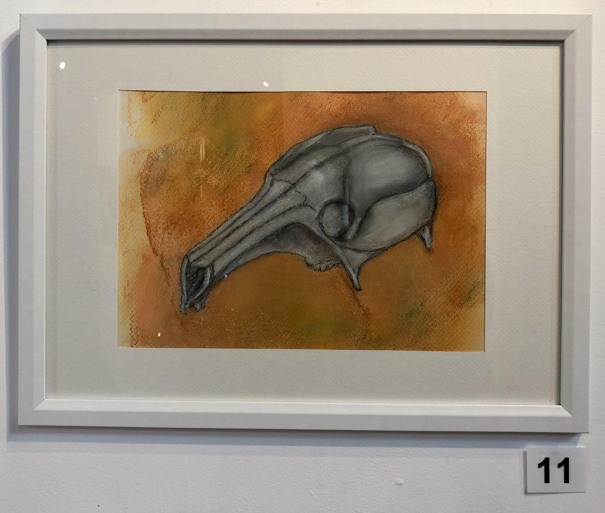 """""""Skull - Kangaroo"""" by Lisa Timms Stevens"""