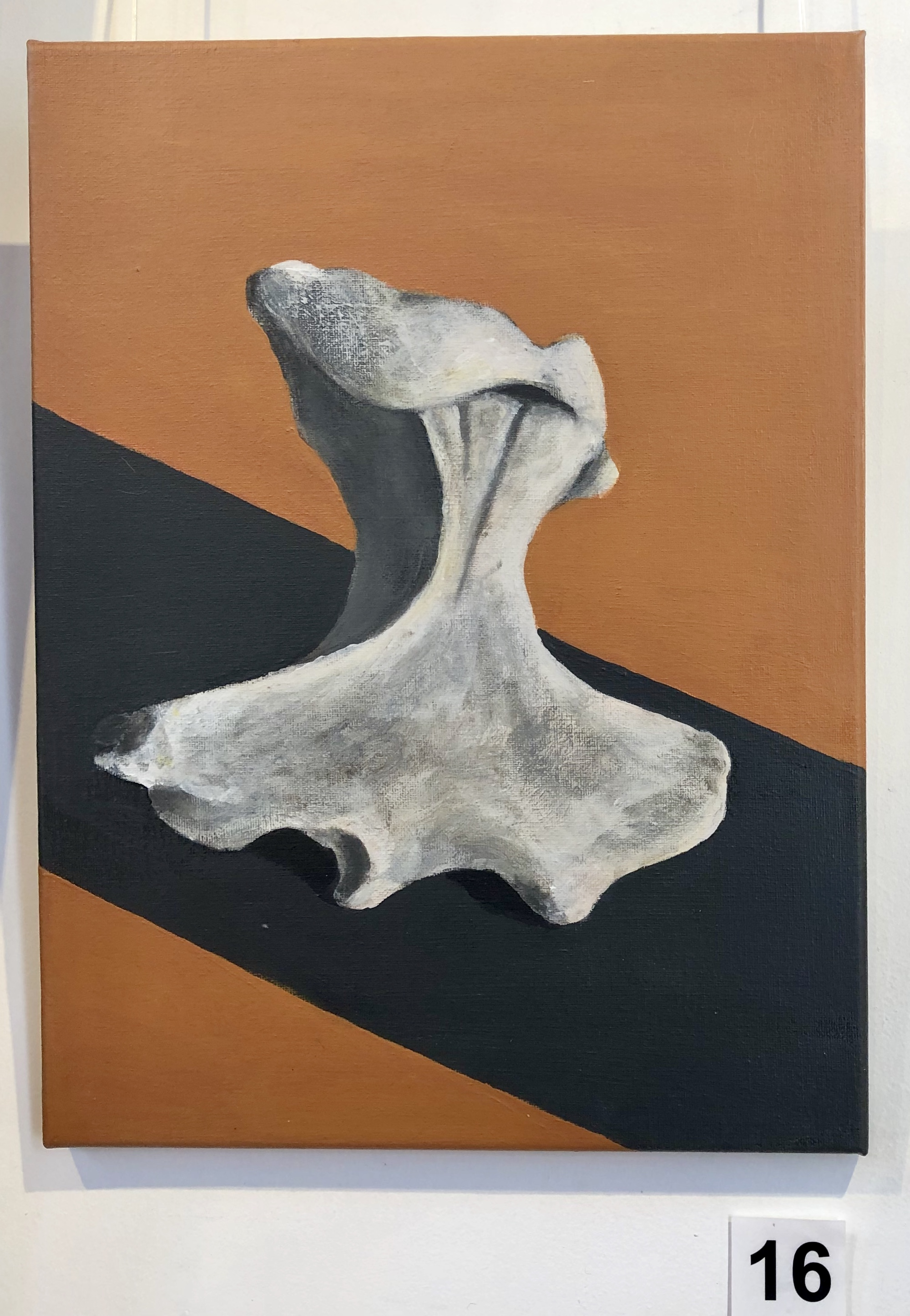 """Humerus - Echidna"" by Lisa Timms Stevens"
