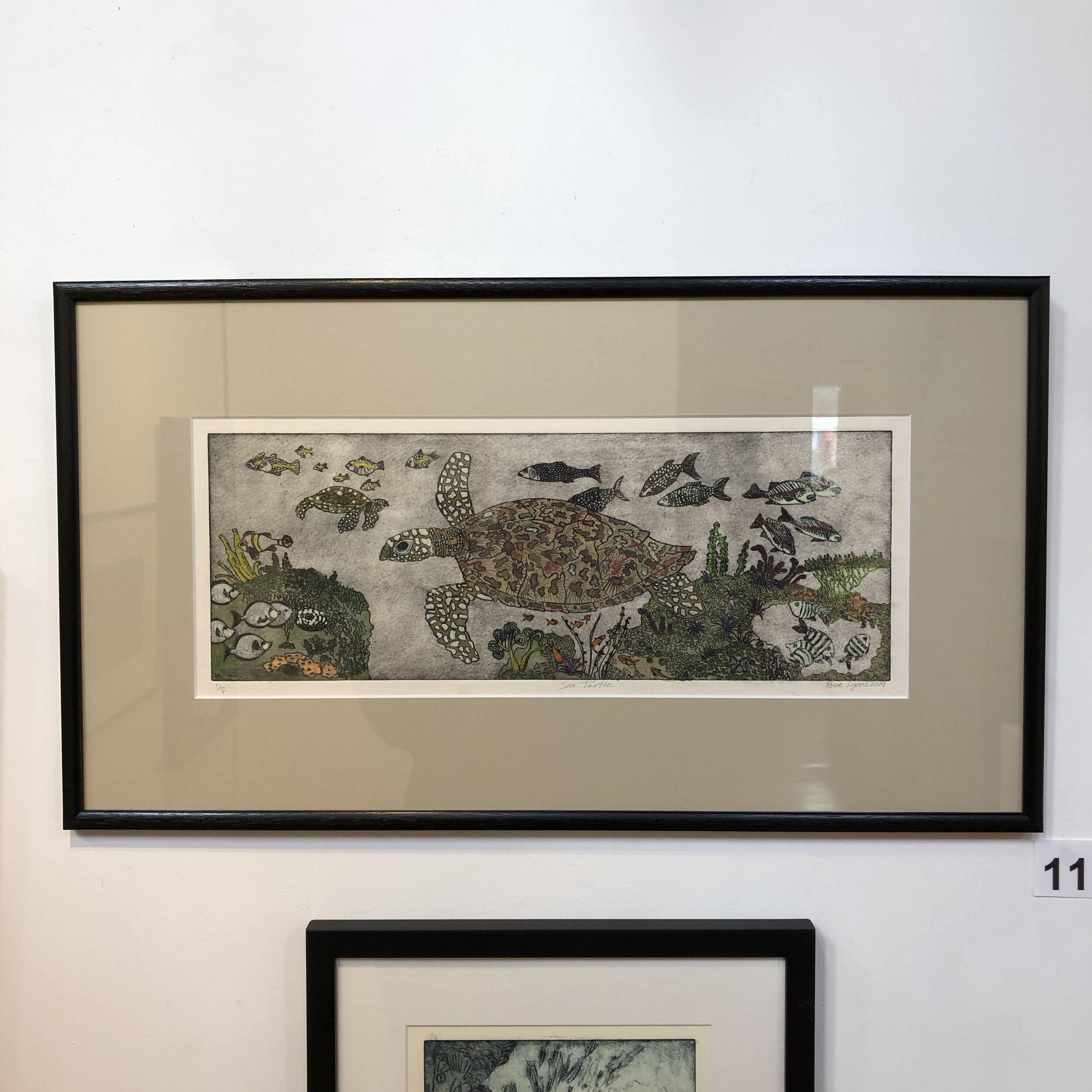 """""""Turtles"""" by Rosie Lyons"""