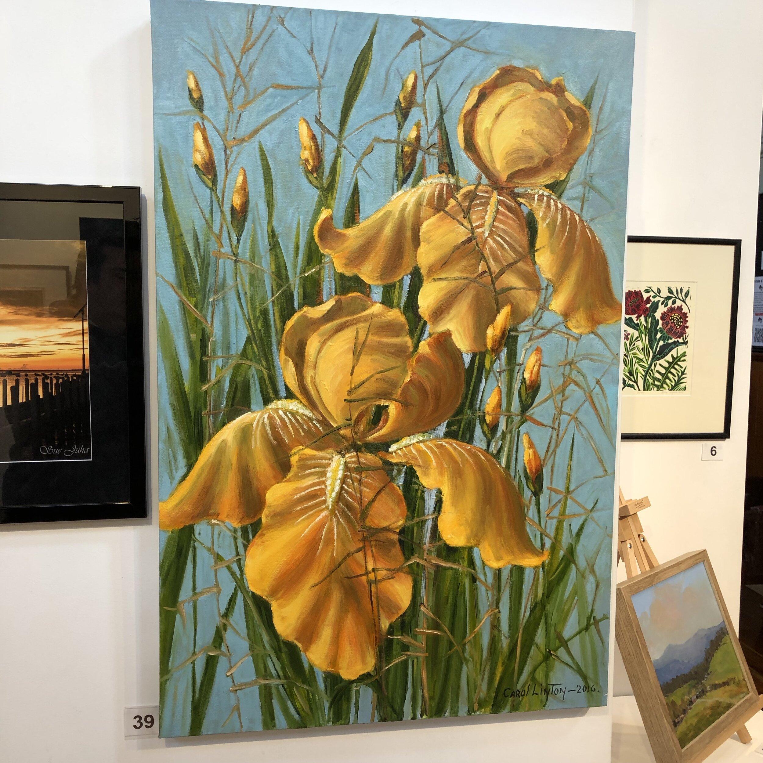 """Yellow Iris"" by Carol Linton"