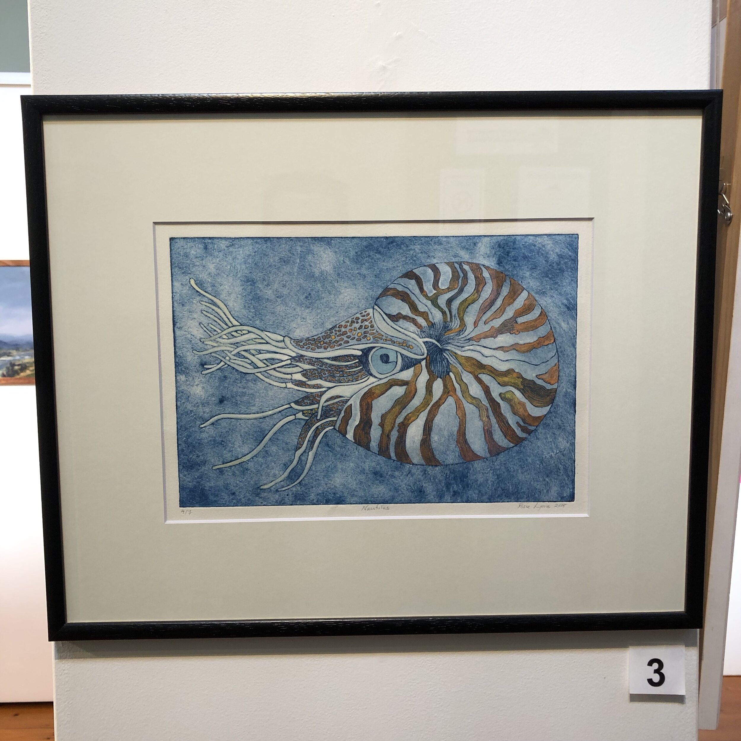 """Nautilus"" by Rosie Lyons"