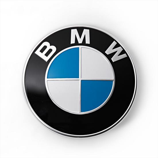 Emblem-neu_03_4767.jpg