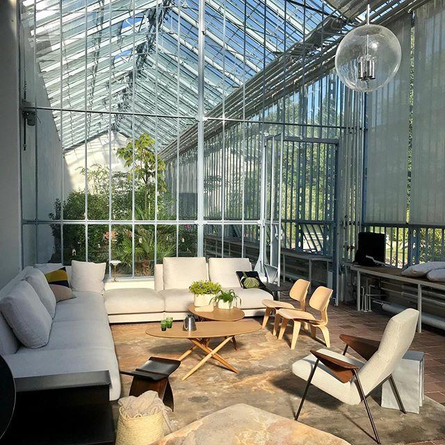 Heute geht es los mit unseren Workshops im @solebich Sommer Apartment. Und es gibt wohl keine schönere Location für eine PlantNight als das Eiserne Haus im Garten des Nymphenburger Schlosses. Kommt vorbei - um 16 Uhr geht's los.