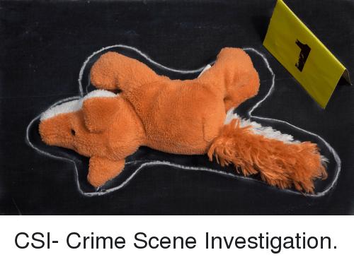 CSI Stuffed Animals.png