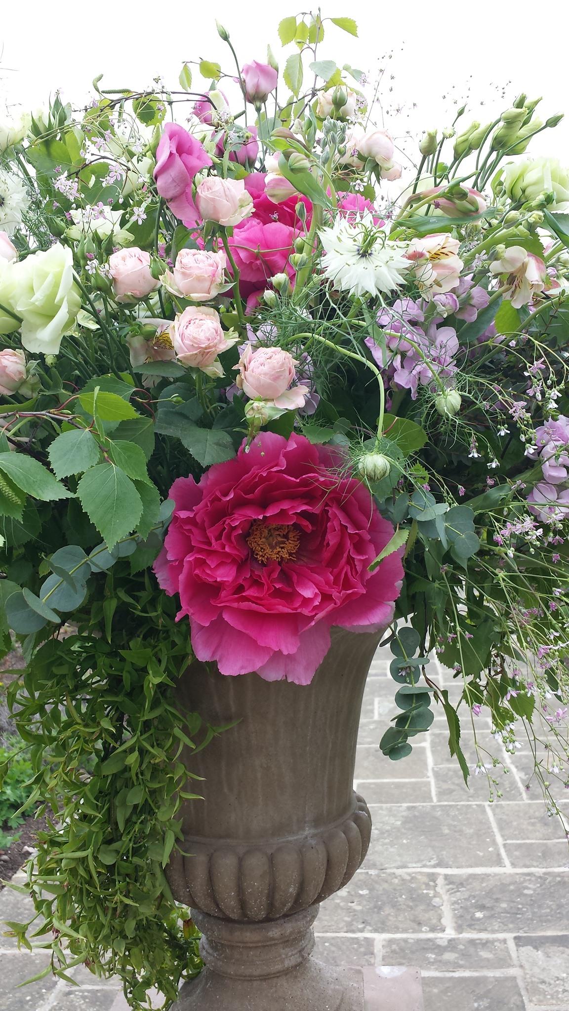 flower class.jpg