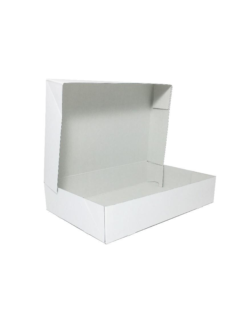 baden_packaging_aufrichteschachtel freigestellt.jpg