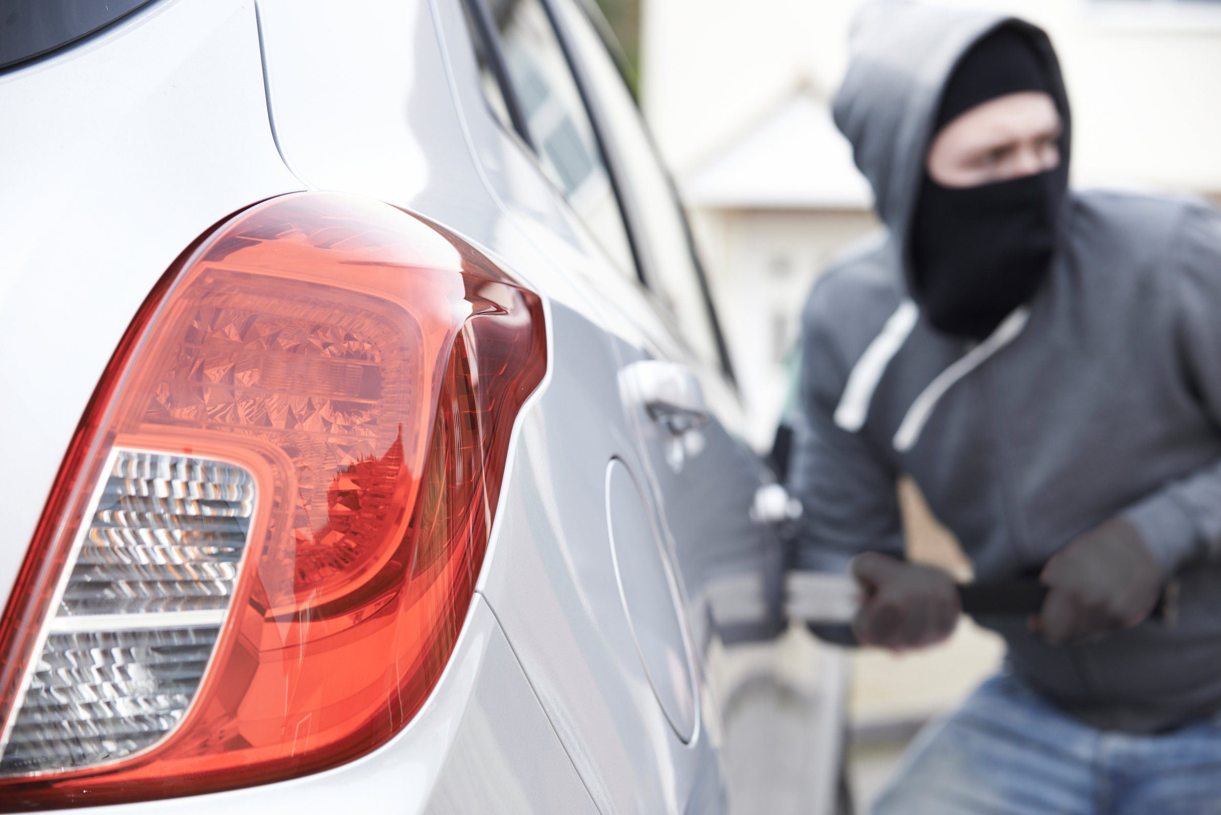 Theft Deterrent — Expert Dealer Services