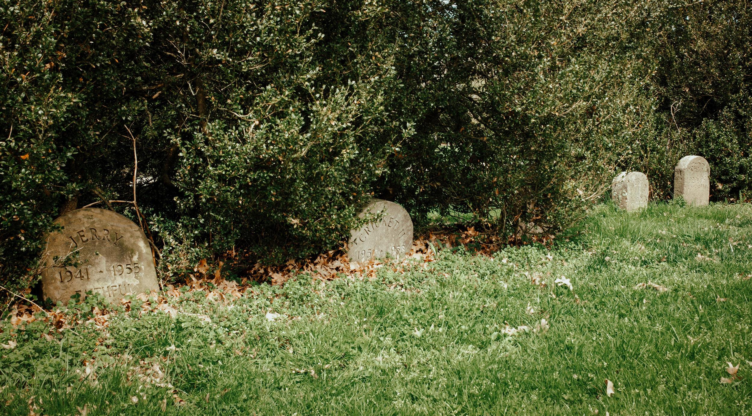 kw-hartwood-pet-cemetery-img2.jpg