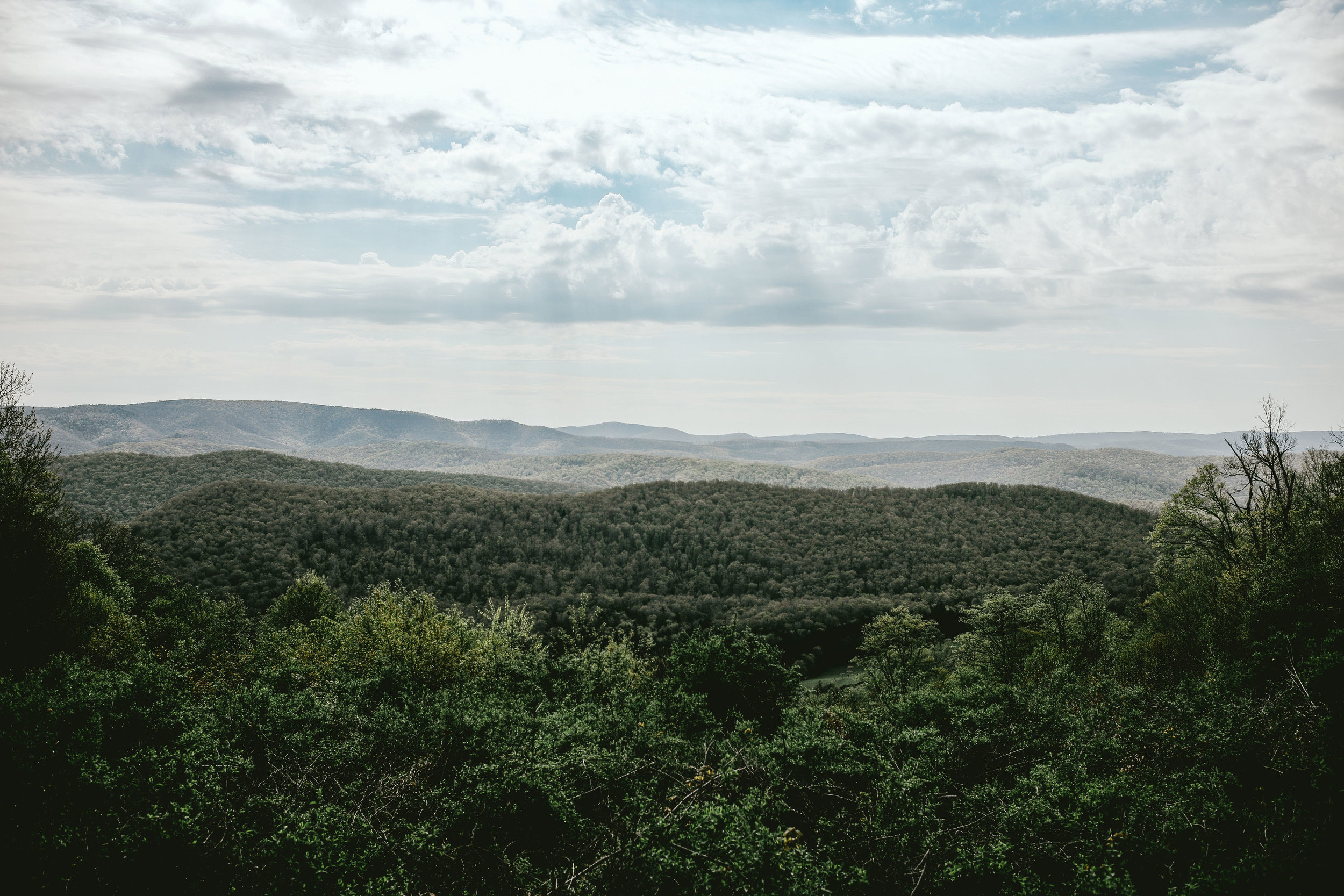 pictured above: The view from atop Cheat Mountain.