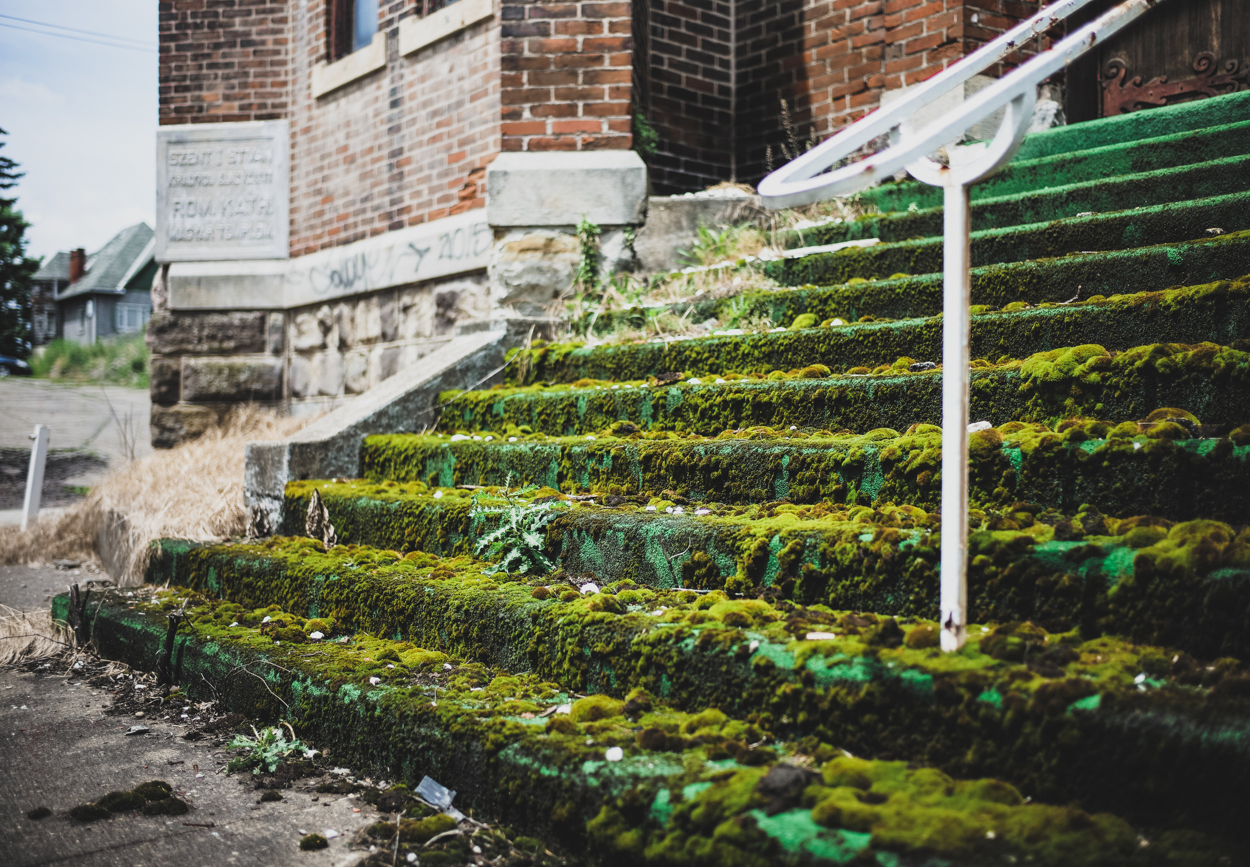 pictured above: moss grows on the front steps of the church. kinda creepy/cool and radioactive looking!