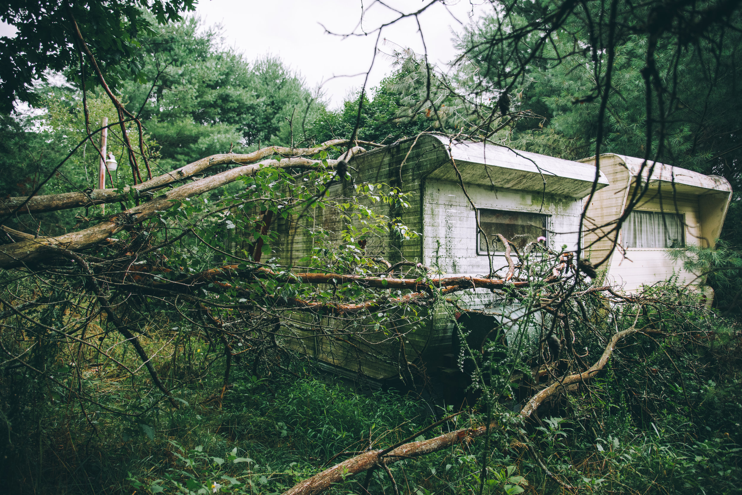 pictured above: two mobile homes sit abandoned in the woods of rural VA.