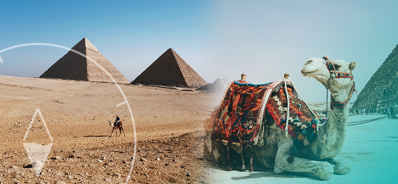 Impact egypt 2019 - July 27-August 10