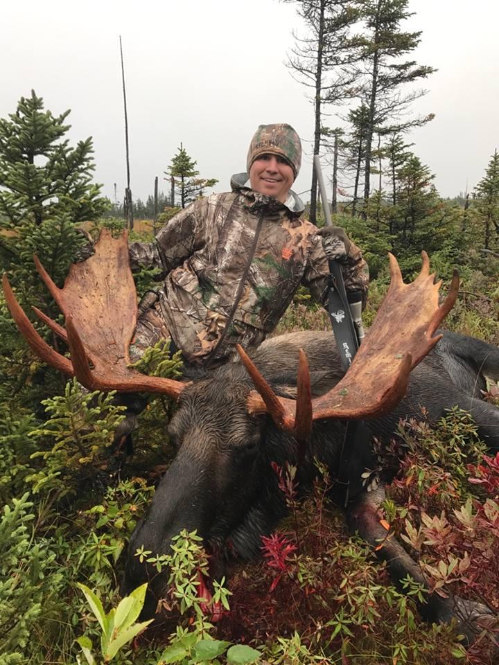 Moose -3.jpg