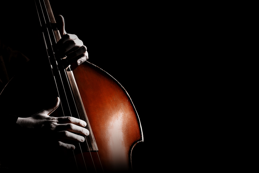 Best Twin Cities' Live Jazz Band - tips the Scales of Jazz - intimate improvisation from a bygone era, Court's In Session is Great Jazz  for events o intimate gatherings where audiences are as much a part of the music as the band. Join or book Court's In Session - tipping the scales of Jazz