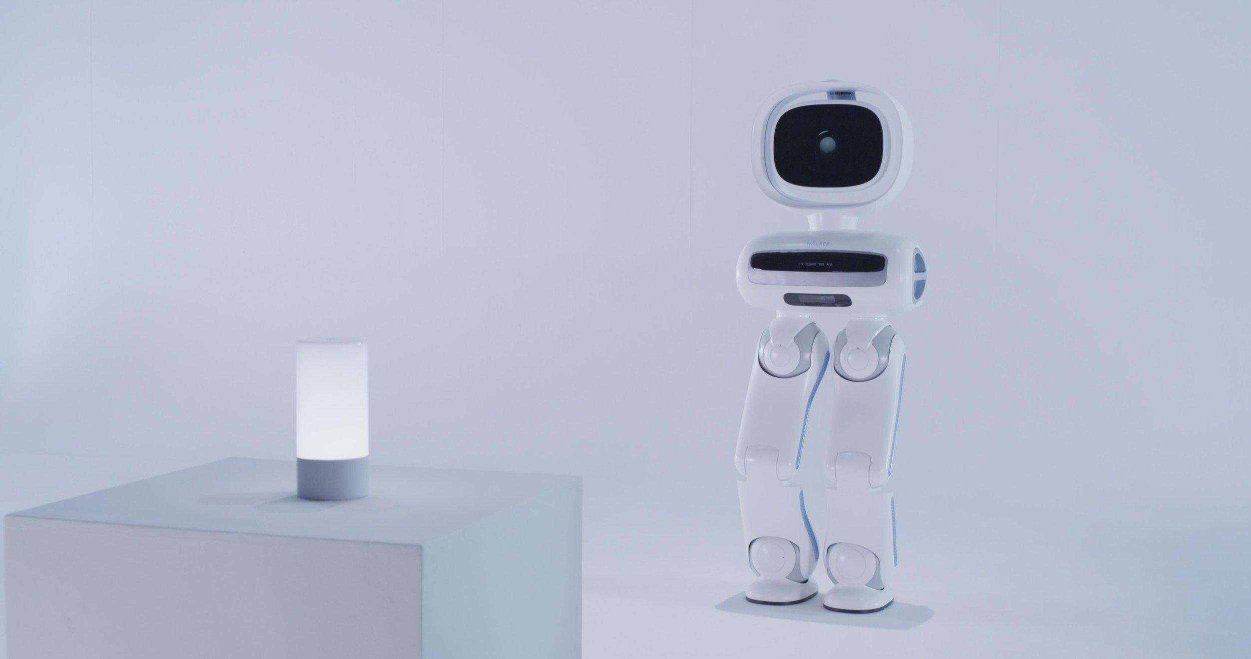 Walker_Robot_1.jpg