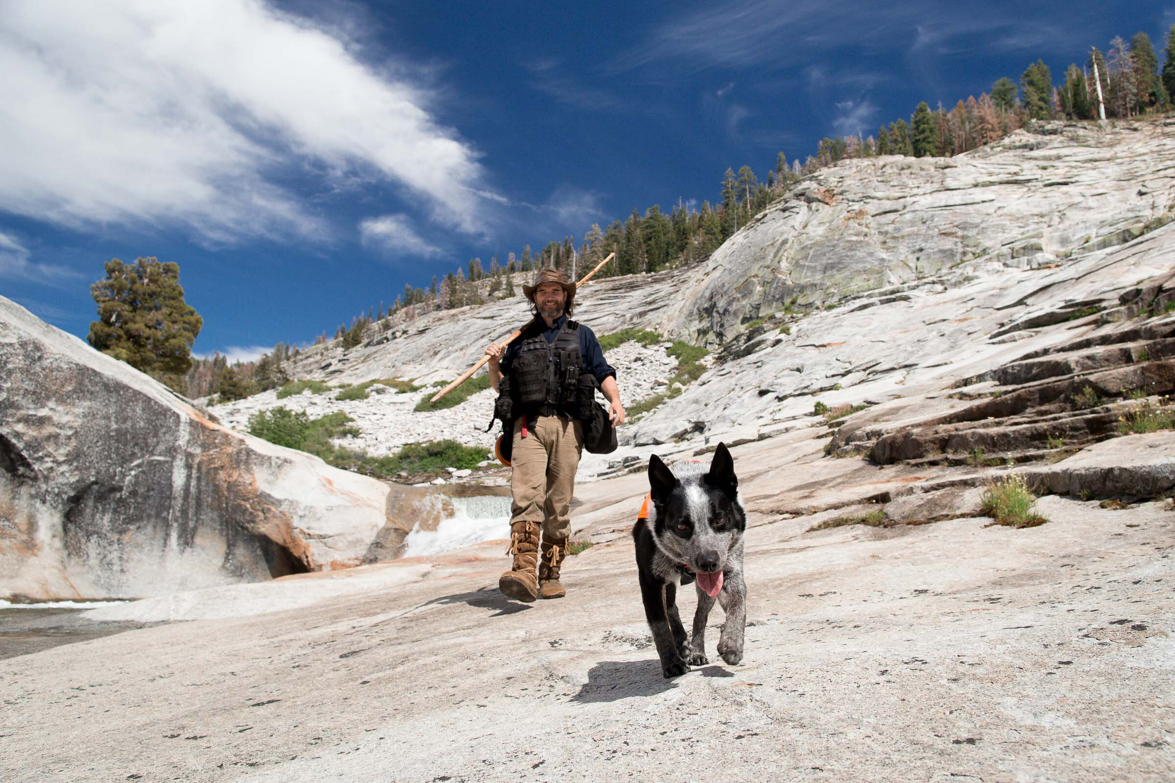 Trail Blazers - We adopt the K9 scamps of the shelter world, those dogs deemed too wild to be pets, and teach them in scent detection. Together we travel to wild spaces and places, working hard to conserve them, one non-invasive project at a time.