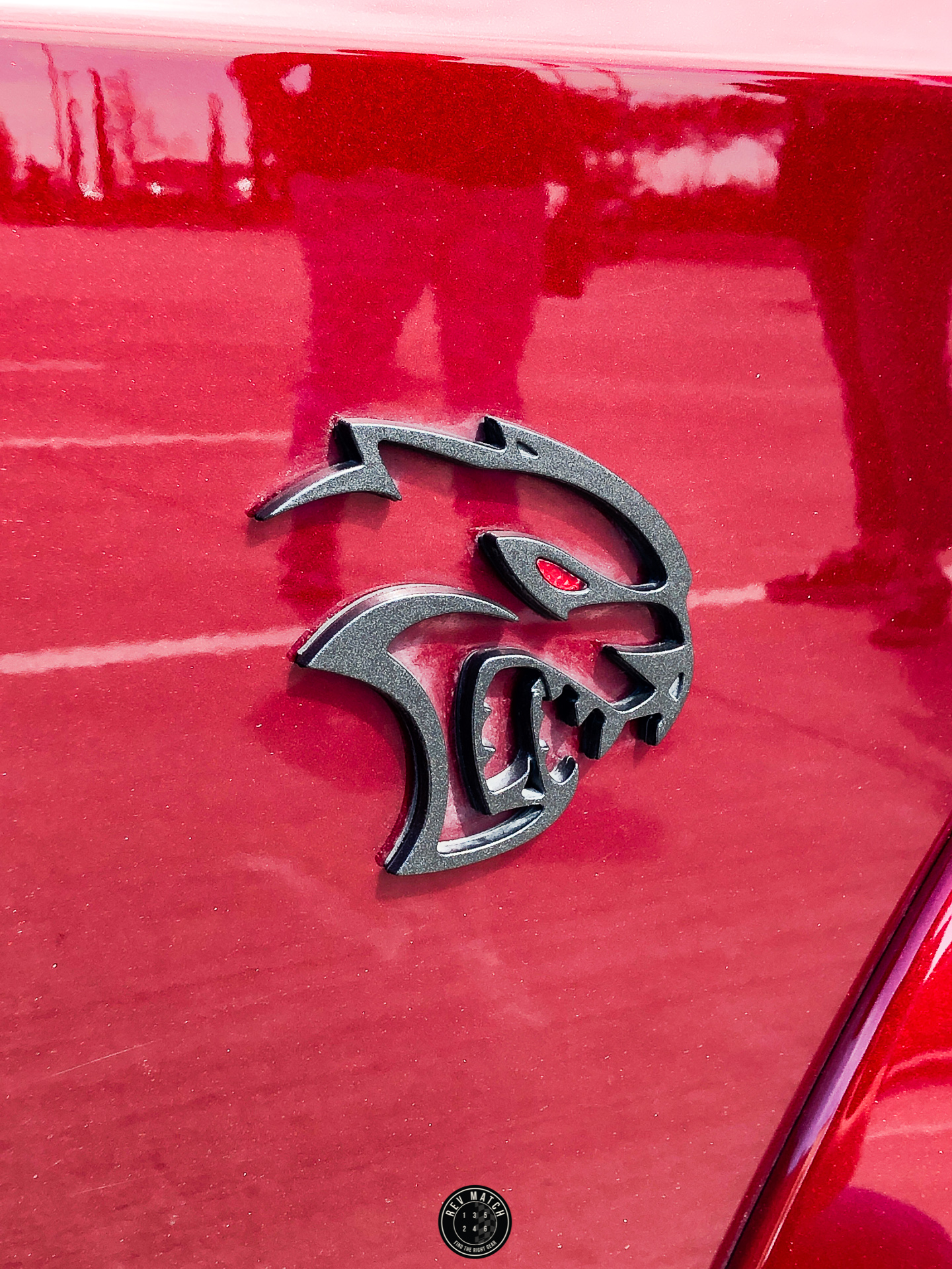 Texas Auto Roundup 2019 Rev Match Media-1.jpg