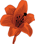 306.-150png.png