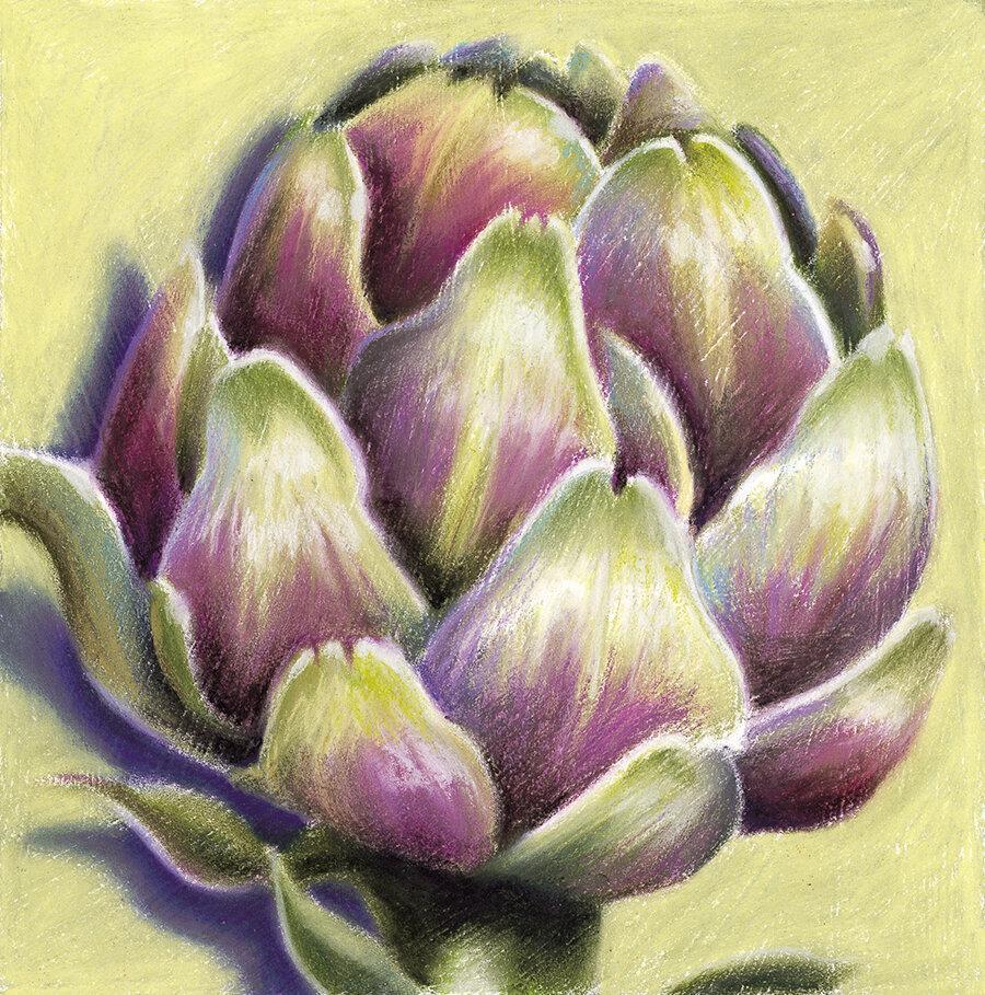 """Artichoke""  Soft pastel on paper. 30x30cm. Unframed original.  Archival prints available ."