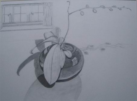 an early drawing - orchid in the kitchen - hours of concentrated looking