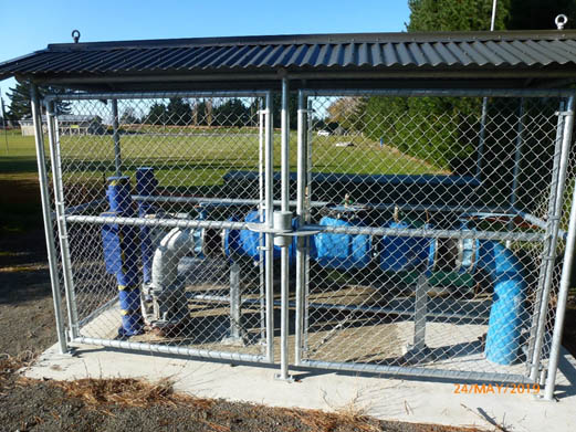 New backflow preventor and well head security cage