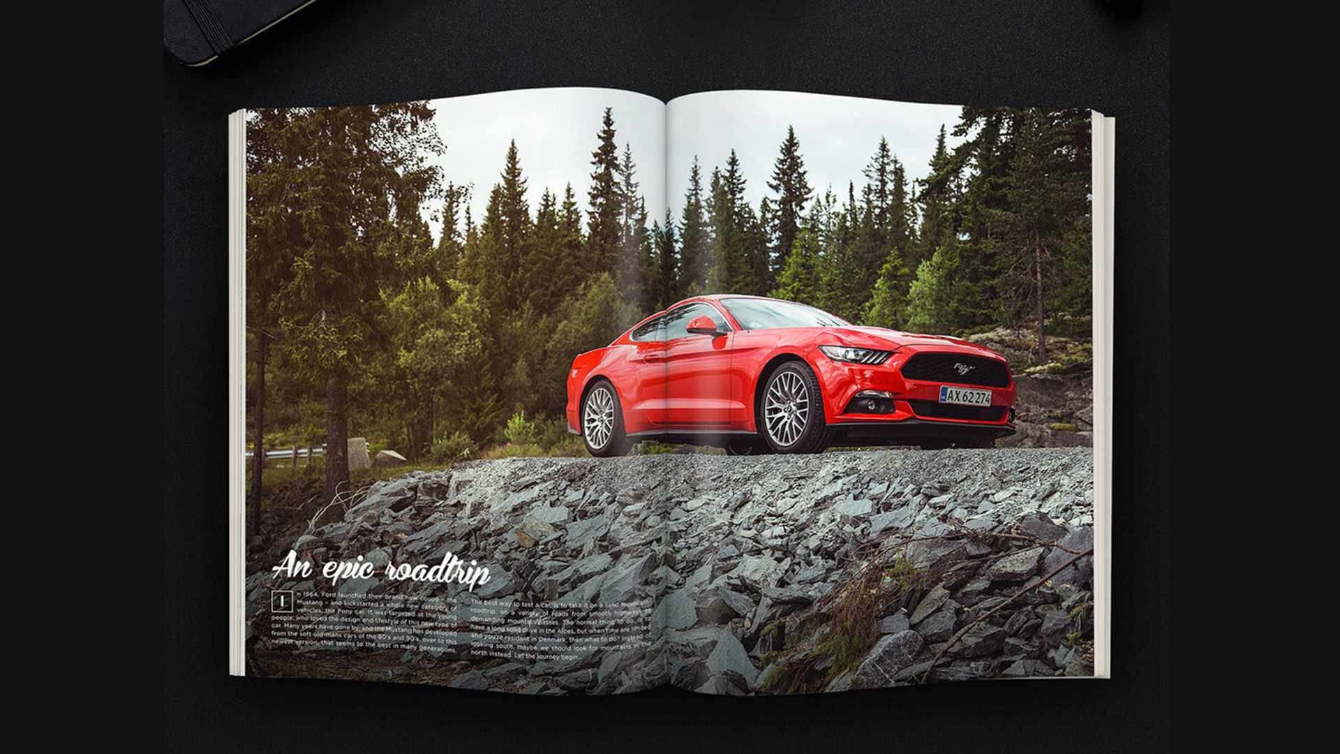 CAse - foto og rejsefeature - THE MUSTANG