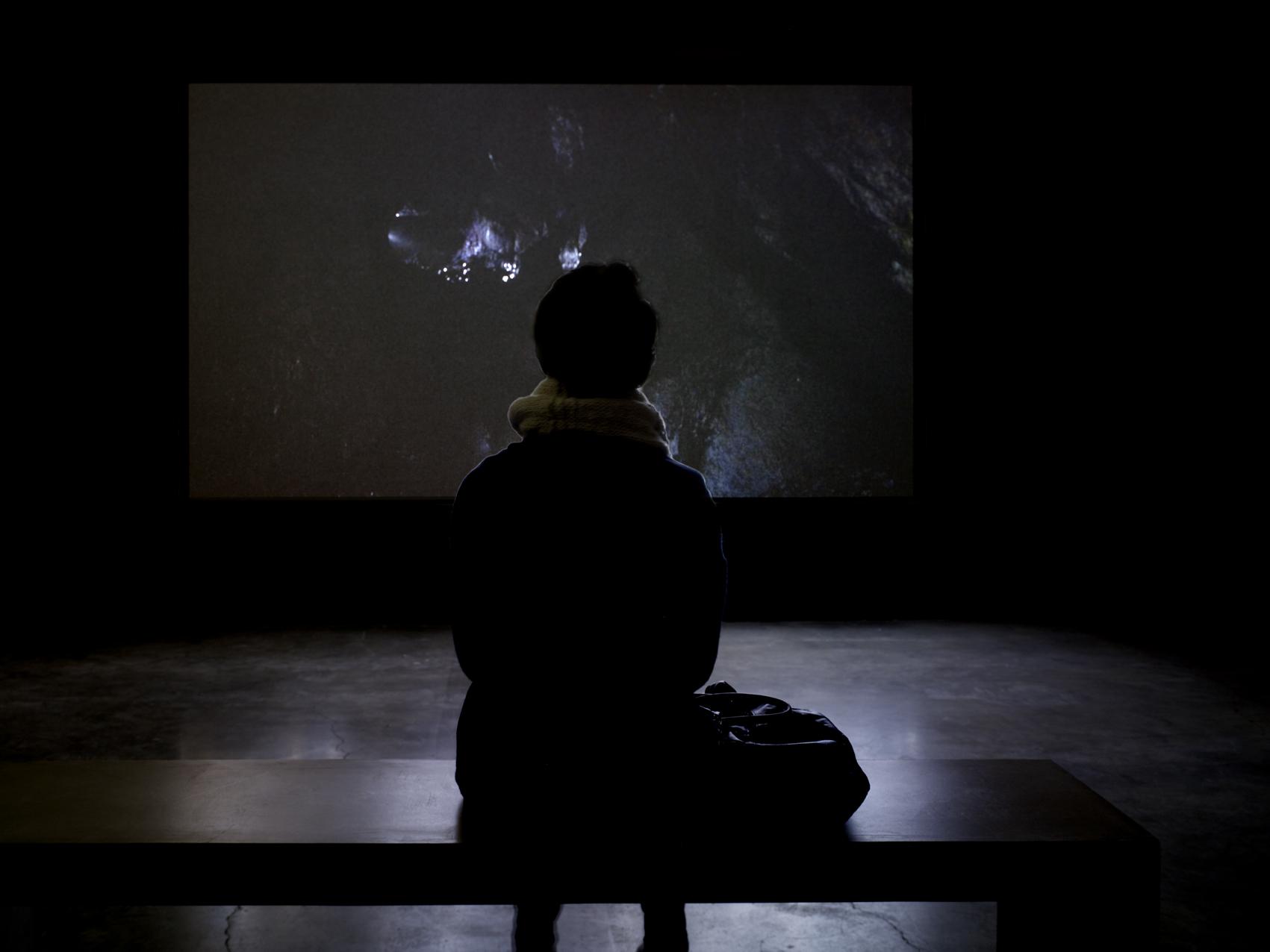"""Vue de l'exposition de Laurent Pernot """"Ruée vers la perdition"""", Palais de Tokyo. Sam Art Projects. Photo André Morin."""