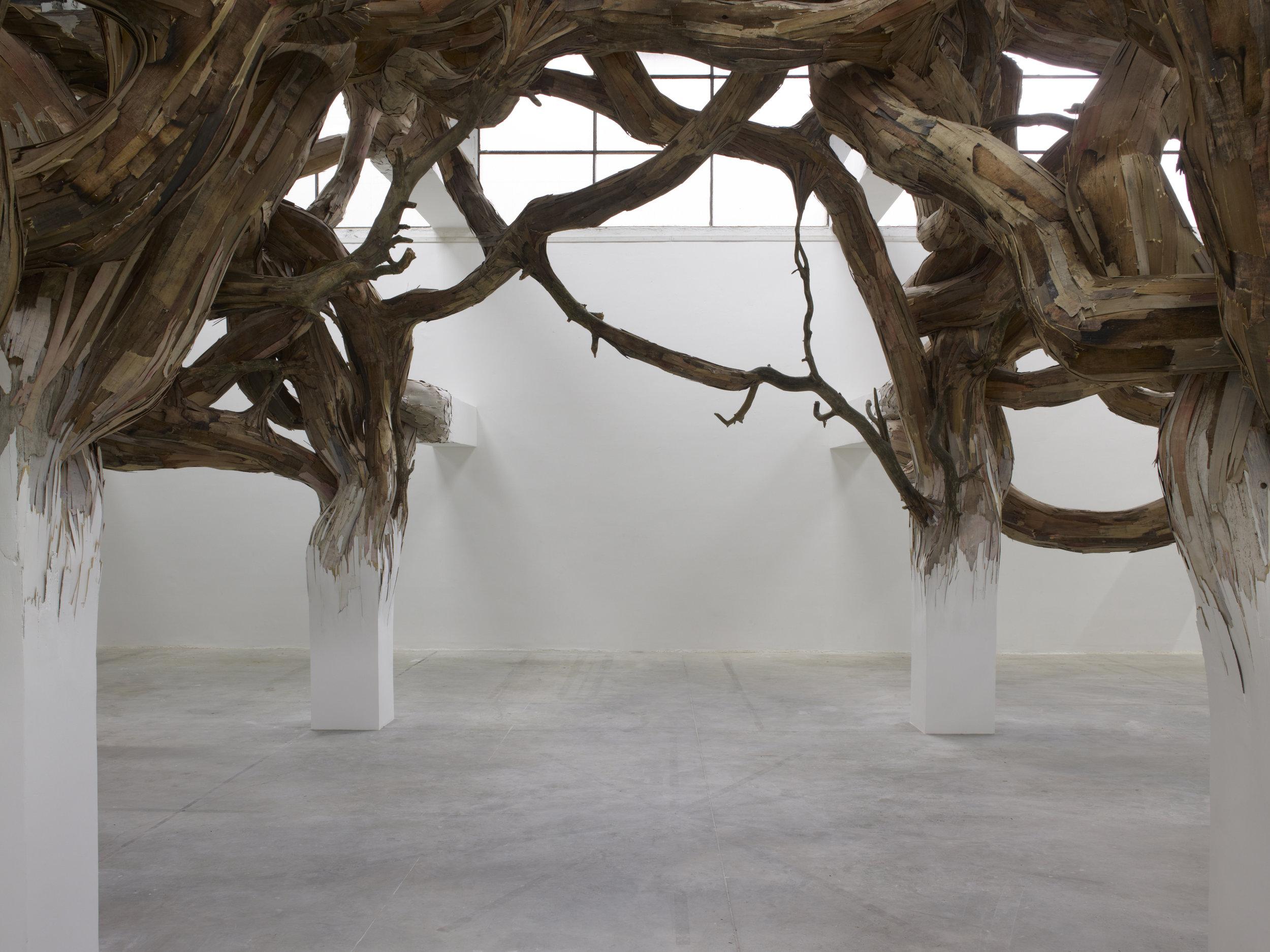 """Vue de l'exposition de Henrique Oliveira, """"Baitogogo"""". Palais de Tokyo."""