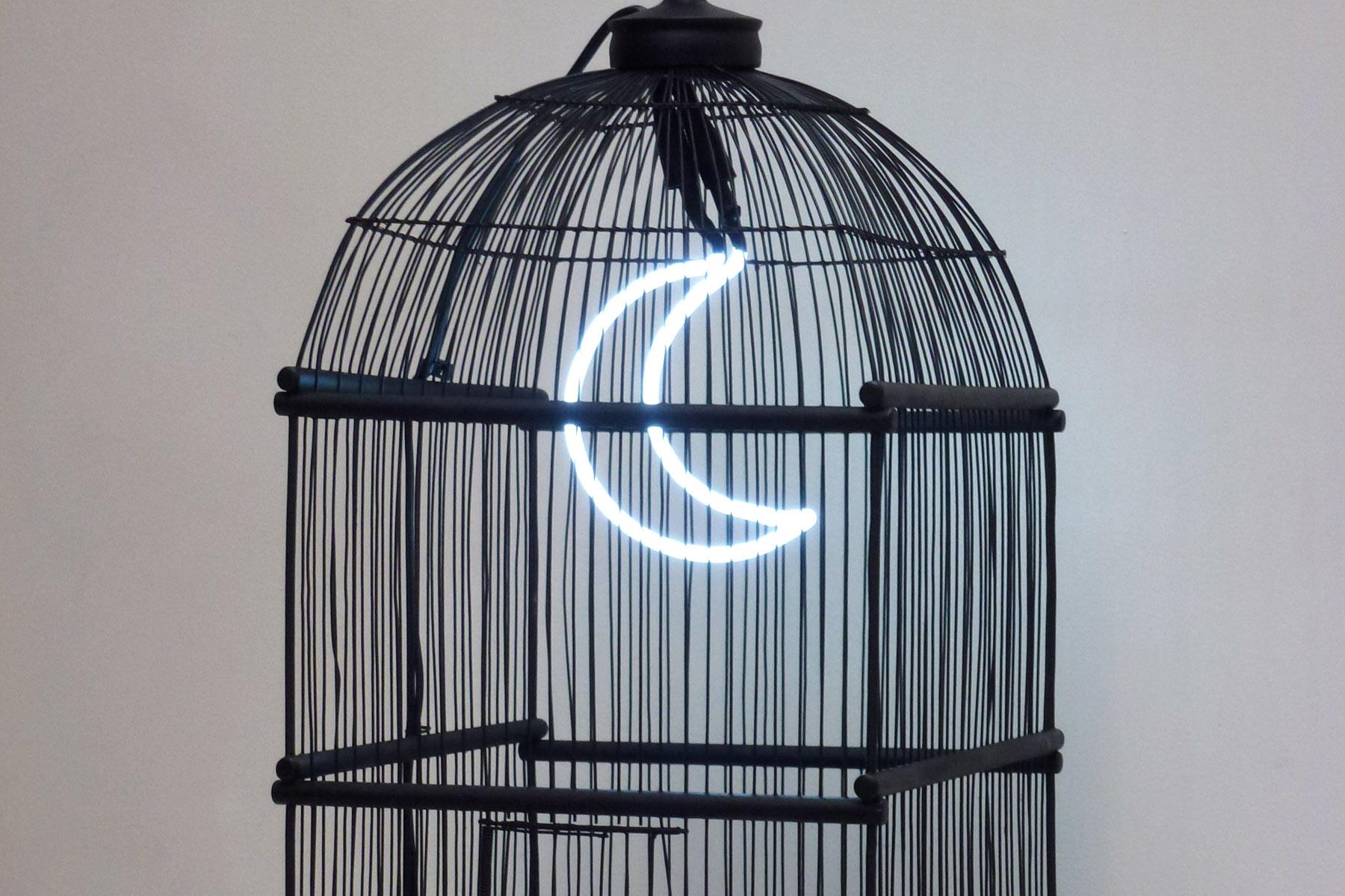 Captivité, 2008.