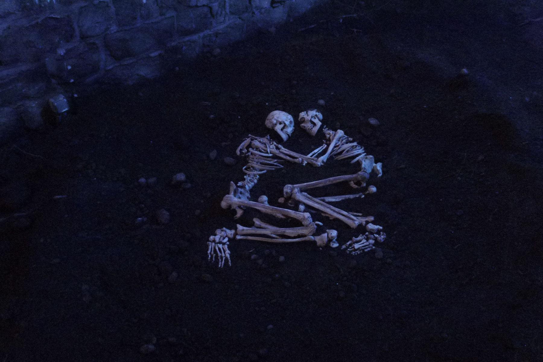 Nous dormirons ensemble, 2012.