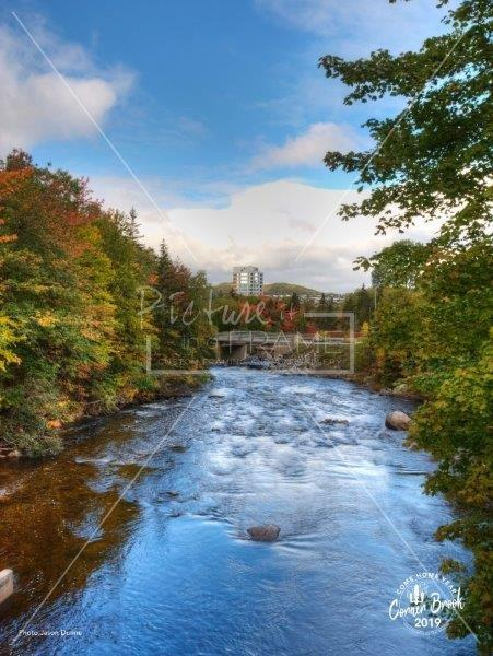 Squires Building from Margaret Bowater Park - by Corner Brook photographer Jason Dunne. Size: 14