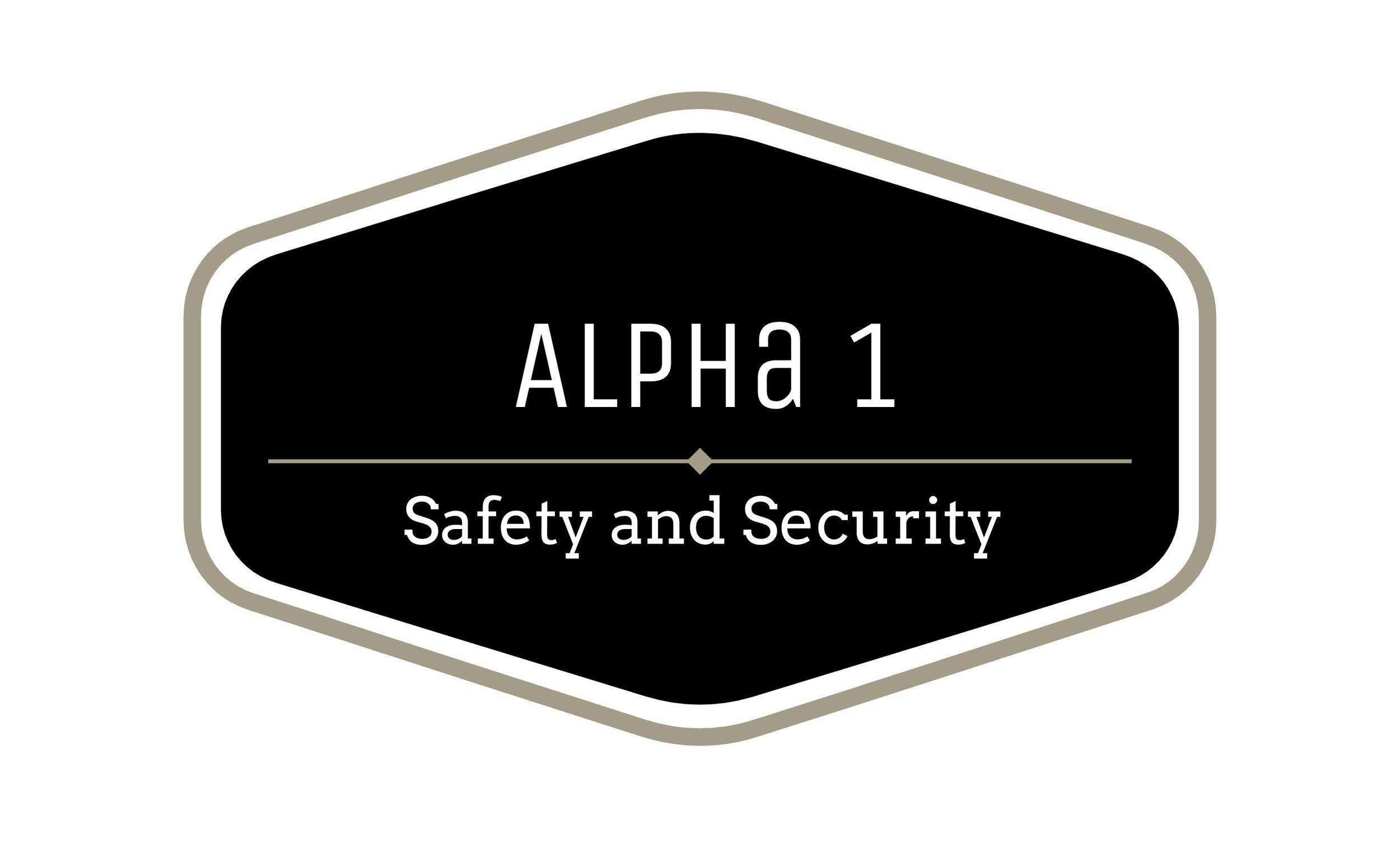 Alpha logo[6151].jpg