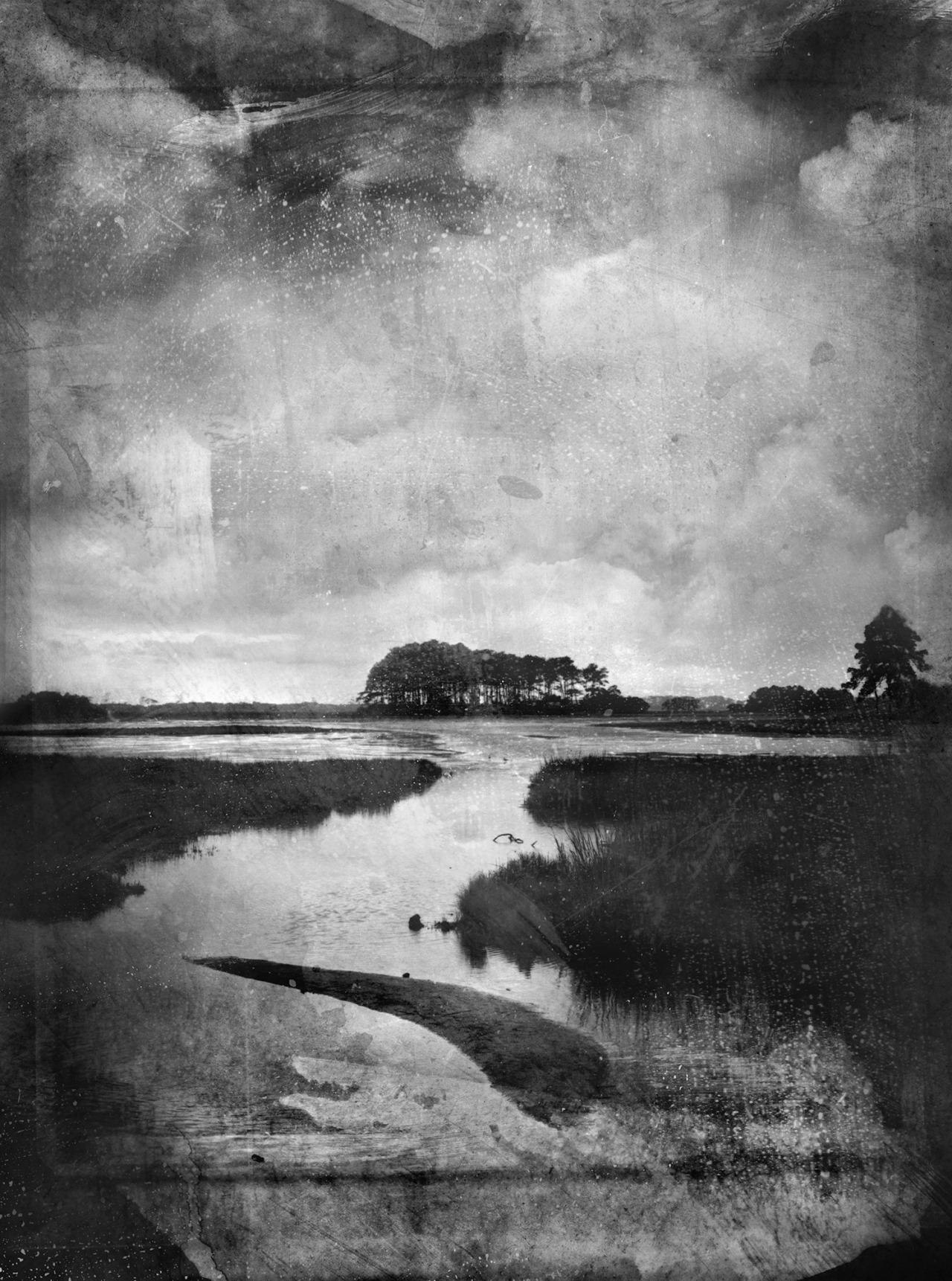 Landscape at Assateague Island      70  x  48   mixed media on panel    2013