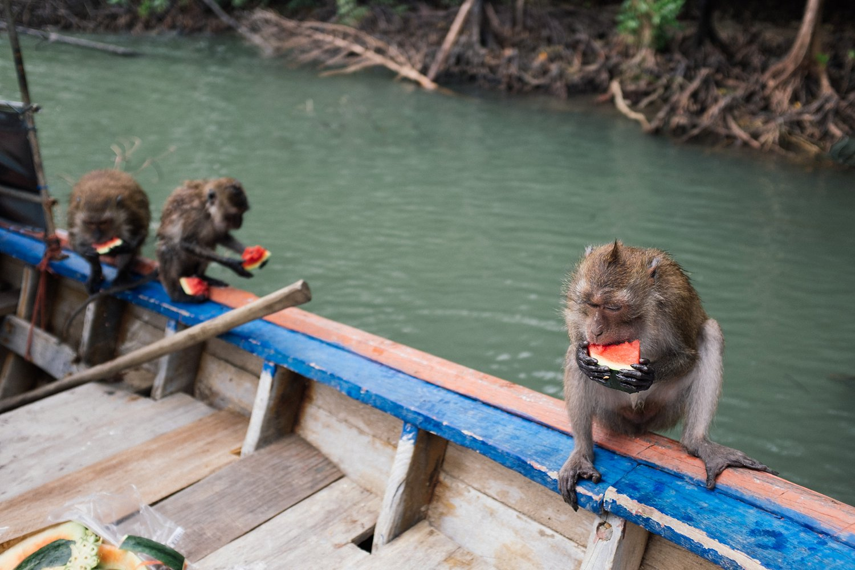 Thailand Koh Lanta 33.jpg